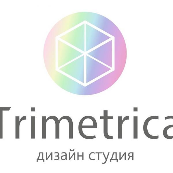 Логотип компании Дизайн студия Trimetrica